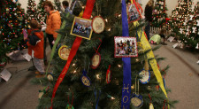 Somerset County Park Commission to Recycle Christmas Trees