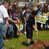 FR&A Pictorials: Arbor, Earth Day Observances at Pine Grove Manor, MacAfee Road schools