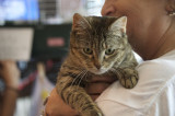 Three Rutgers Plaza Businesses Hold Fundraiser For Second Chance For Animals