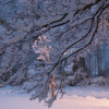 First Real Snowstorm Of Season Hits Township; More To Come