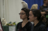 FR&A Photo Gallery: Pets Of All Kinds At Weekend Pet Expo