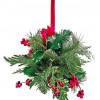 Holiday Kissing Ball Workshop Offered By County