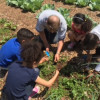 Pine Grove Manor School Students Participate In 'Seed To Salad' Program