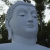 Sri Lankan Buddhists Celebrate Statue's 'Birthday'