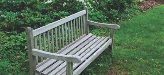 Give a Lasting Tribute in a Somerset County Park