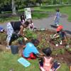 Update: Children's Garden Workshop Set For Colonial Park Cancelled