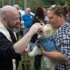 'Blessing Of The Animals' Held By Second Chance For Animals