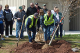 Arbor Day Celebration Set For Naaman Williams Park