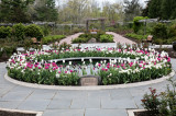 Park Commission To Re-open Colonial Park Rose Garden