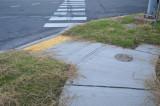 Cedar Grove Lane Repaving Set To Start Sept. 25