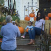Snyder's Farm Welcomes Fall With Annual Festival