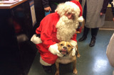 'Santa Paws' Greets Visitors At Franklin Township Animal Shelter Open House