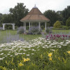 Park Commission Accepting Wedding Reservations