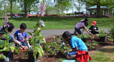 Children's Composting Workshop at Colonial Park