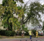 Ray Street Fire Damages Home