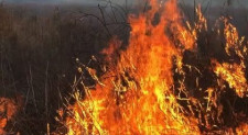 Open Space Committee Likes Prescribed Burns For Grasslands